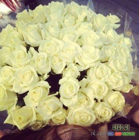 الزهور - Güllər..